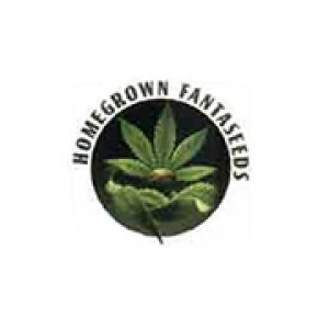 Homegrown Fantaseeds Seeds Discount Cannabis Seeds