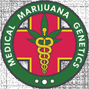 MM Genetics | Discount Cannabis Seeds