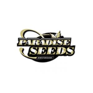 Paradise Cannabis Seeds | Discount Cannabis Seeds