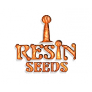 Resin Seeds | Discount Cannabis Seeds