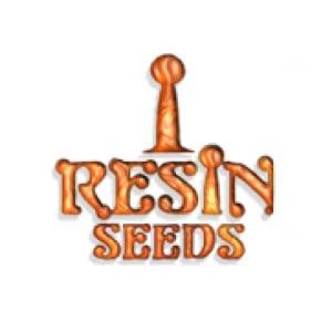 Resin Seeds | Discount Cannabis Seeds