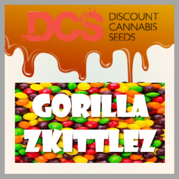 Gorilla Zkittlez Feminised Cannabis Seeds | Discount Cannabis Seeds
