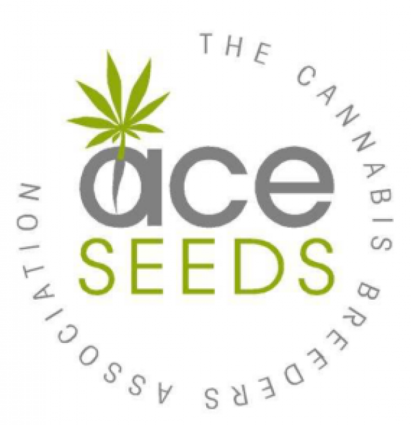 Ace Seeds | Discount Cannabis Seeds