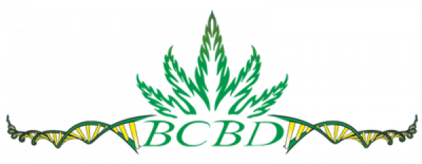 BC Bud Depot Seeds | Discount Cannabis Seeds