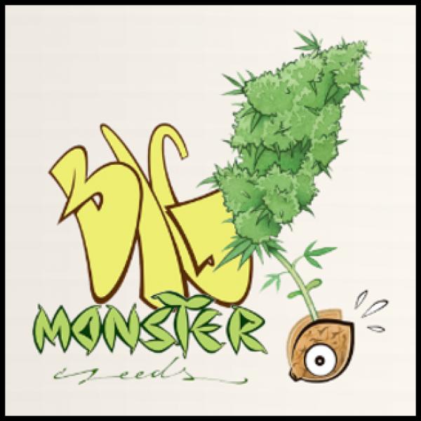 Big Monster Seeds - Discount Cannabis Seeds