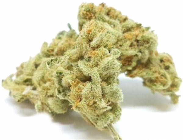 Charlotte's Web Feminised Cannabis Seeds | Dispensario Seeds