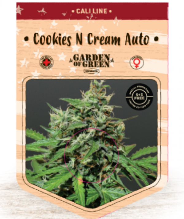 Cookies n Cream Auto Feminised Cannabis Seeds | Garden of Green