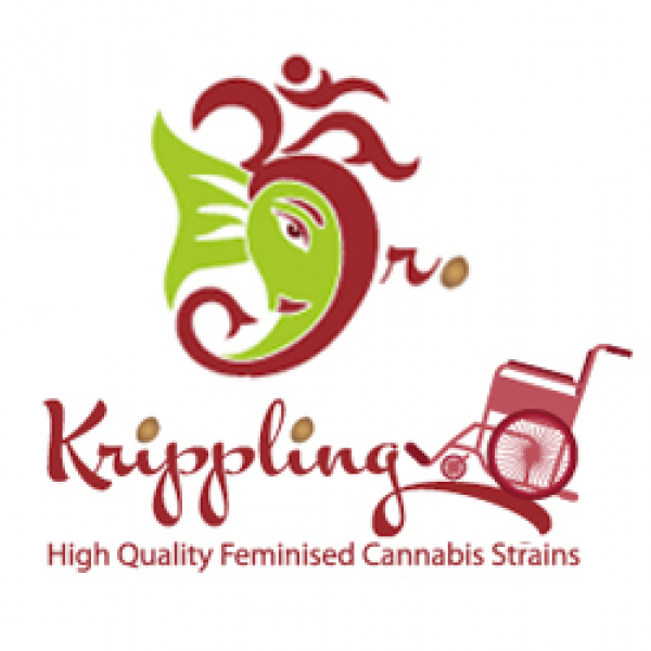 Dr Krippling Seeds | Discount Cannabis Seeds