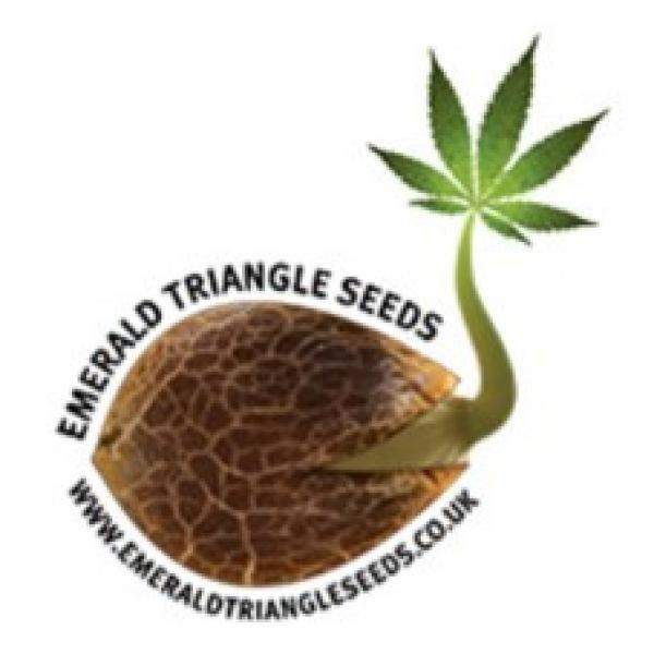 Emerald Triangle Seeds | Discount Cannabis Seeds