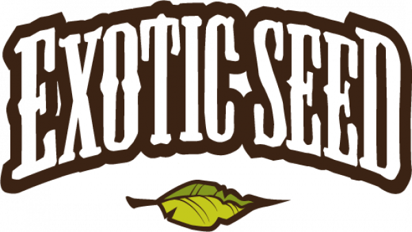 Exotic Seeds | Discount Cannabis Seeds