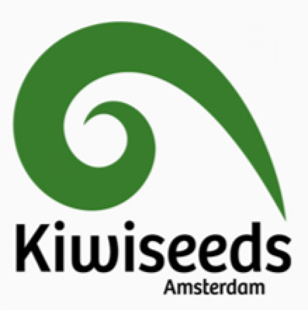 Kiwi Seeds | Discount Cannabis Seeds