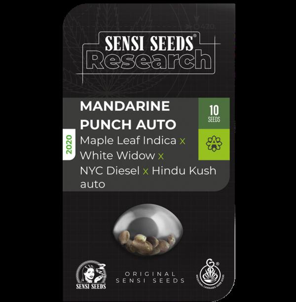 Mandarine Punch Auto Feminised Cannabis Seeds - Sensi Seeds Research