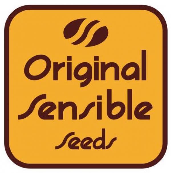 Original Sensible Seeds   Discount Cannabis Seeds