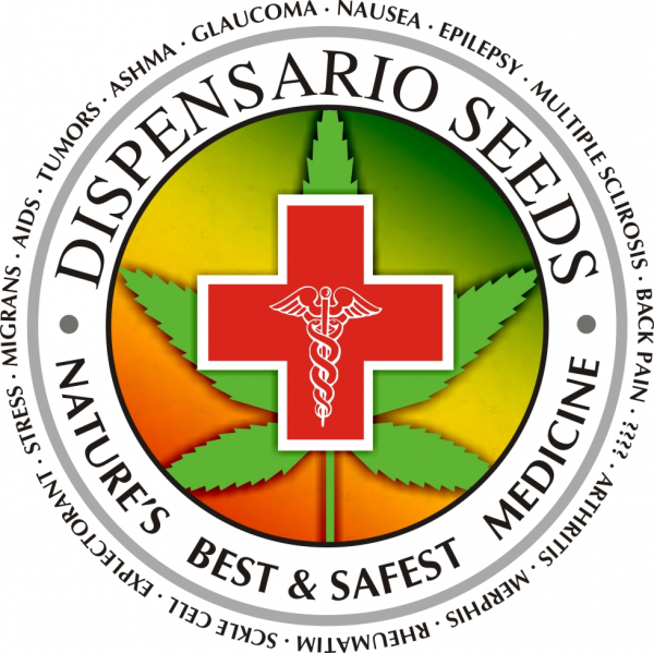 Dispensario Seeds | Discount Cannabis Seeds