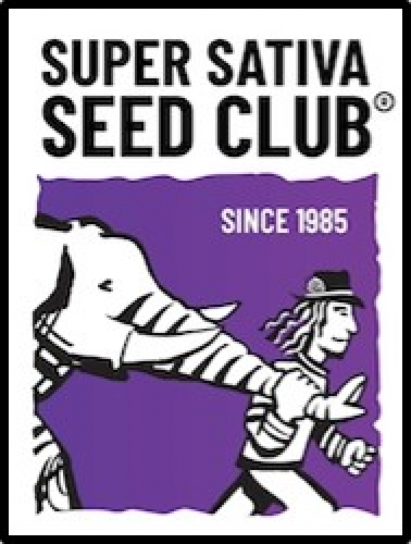 Super Sativa Seed Club - Discount Cannabis Seeds