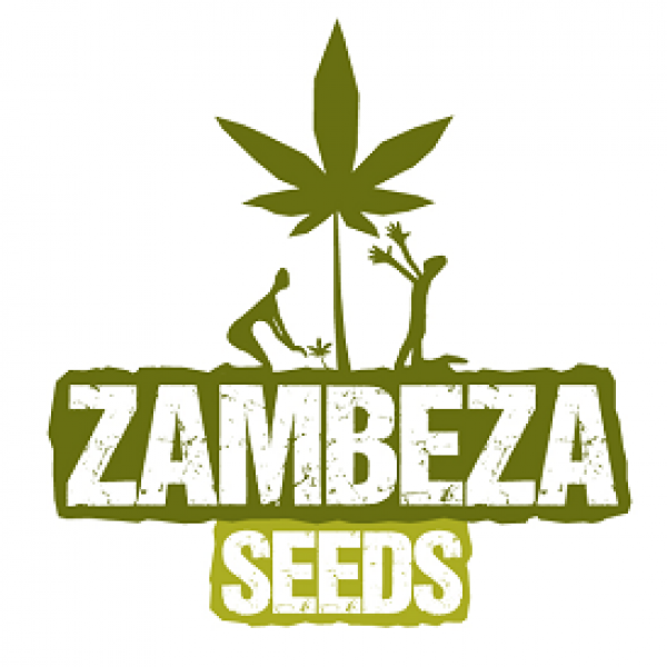 Zambeza Seeds | Discount Cannabis Seeds