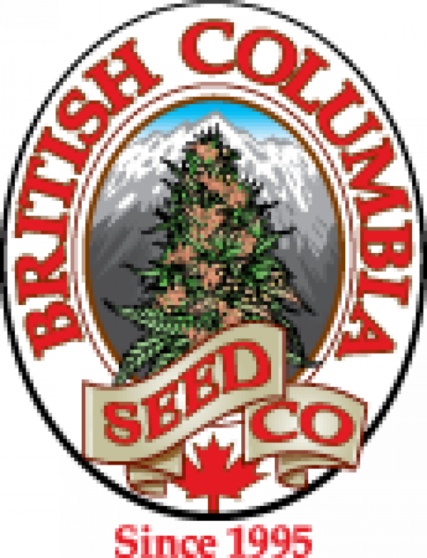 British Columbia Seed Company | Discount Cannabis Seeds