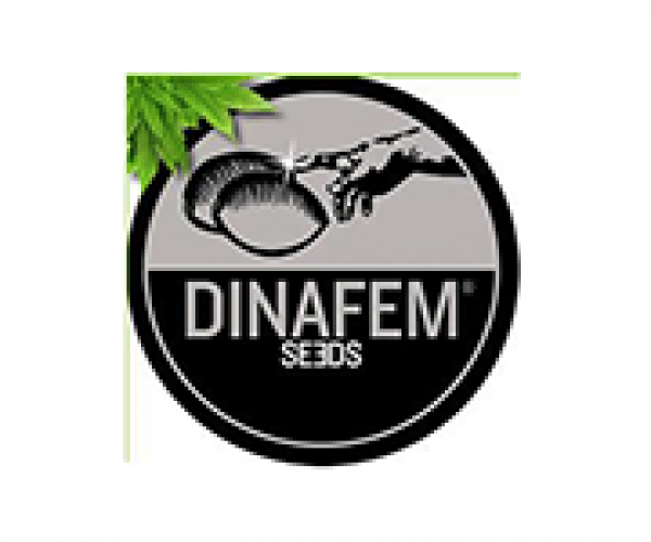 Dinafem Seeds | Discount Cannabis Seeds