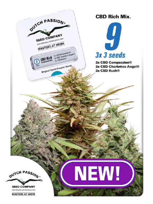 CBD Rich Feminised Mix Cannabis Seeds | Dutch Passion