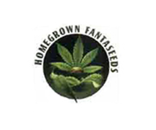 Homegrown Fantaseeds Seeds Discount Cannabis Seeds