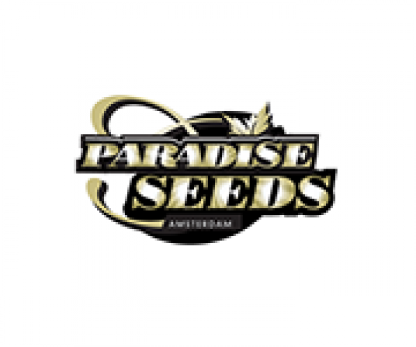 Paradise Cannabis Seeds | Discount Cannabis Seeds