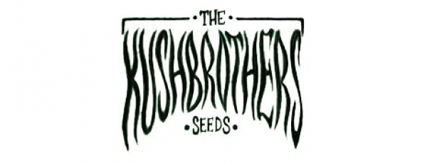 The Kush Brothers Seeds   Discount Cannabis Seeds