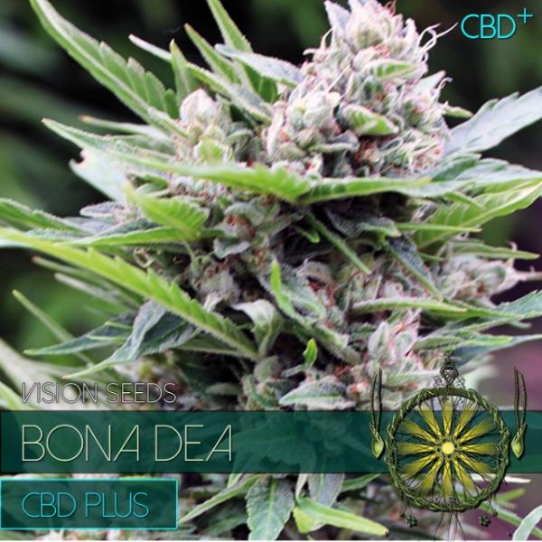 Bona Dea CBD+ Feminised Cannabis Seeds