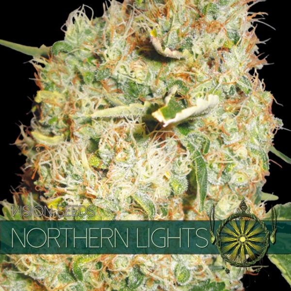 Northern Lights Feminised Cannabis Seeds | Vision Seeds