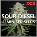 Free Sour Diesel Seeds from Discount Cannabis Seeds