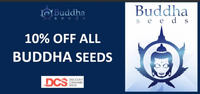 10% Off All Buddha Seeds - Discount Cannabis Seeds