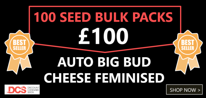 100 Bulk Seeds for £100 - Discount Cannabis Seeds