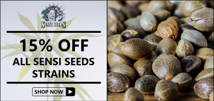 15% Off Sensi Seeds from Discount Cannabis Seeds