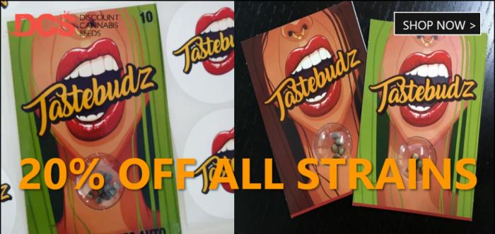 20% Off Tastebudz - Discount Cannabis Seeds
