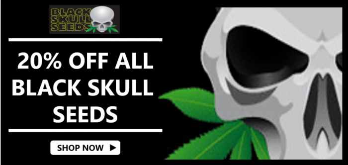 Black Skull Seeds - Discount Cannabis Seeds