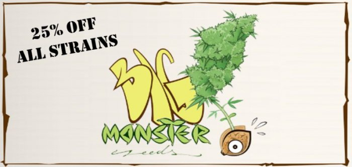 Big Monster Seeds - Discount Cannabis Seeds