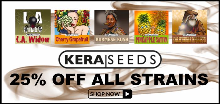25% Off Kera Seeds - Discount Cannabis Seeds