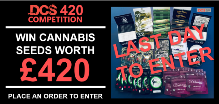 420 Competition - Discount Cannabis Seeds
