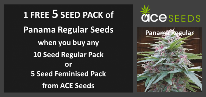 Ace Seeds Promotion June 2017 | Discount Cannabis Seeds