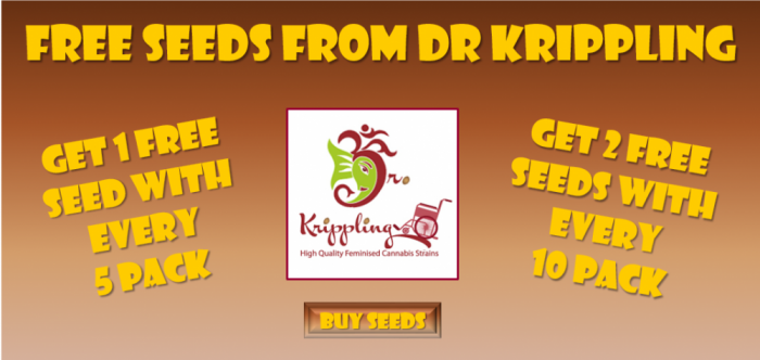 Dr Krippling Free Seeds Promotion | Discount Cannabis Seeds
