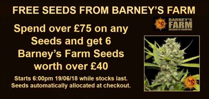 Barney's Farm 6 Free Seeds Promotion | Discount Cannabis Seeds