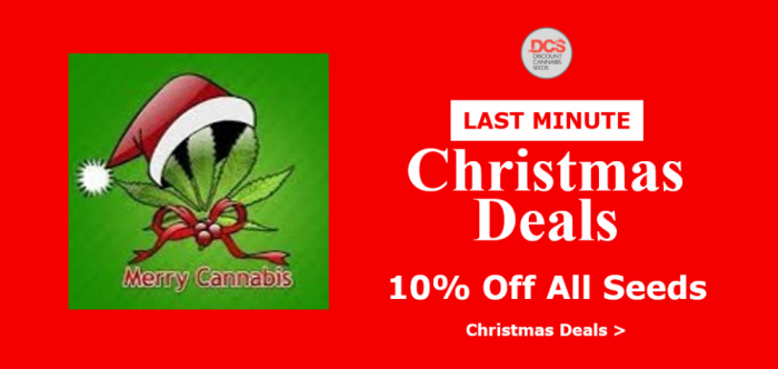 Christmas 2017 | 10% Off All Seeds | Discount Cannabis Seeds