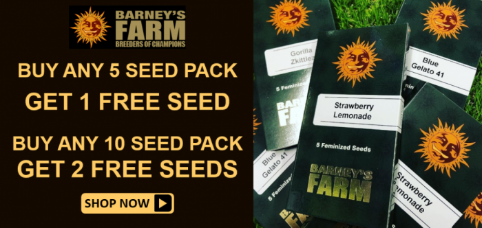 Barneys Farm Free Seeds - Discount Cannabis Seeds