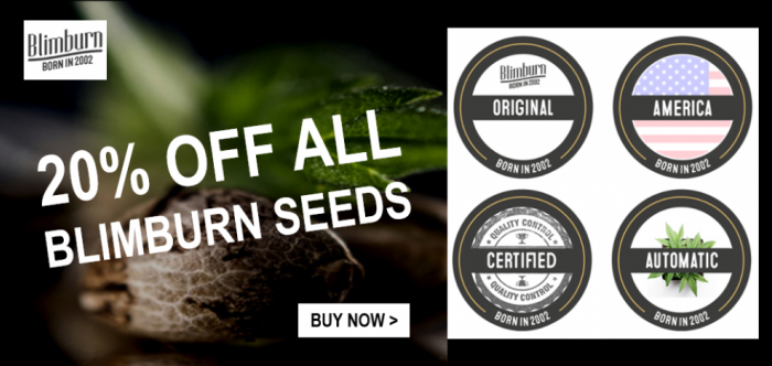 Blim Burn 20% Off Promotion | Discount Cannabis Seeds