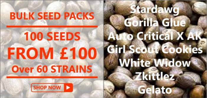 Bulk Seed Packs from Discount Cannabis Seeds