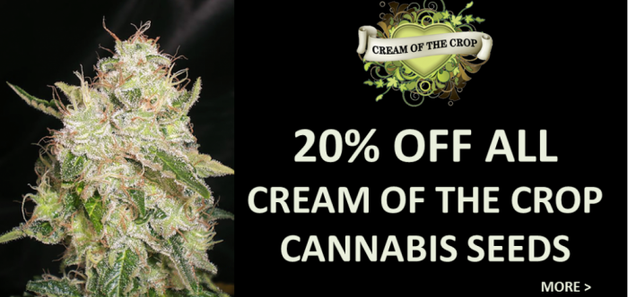 20% off all Cream of the Crop Cannabis Seeds
