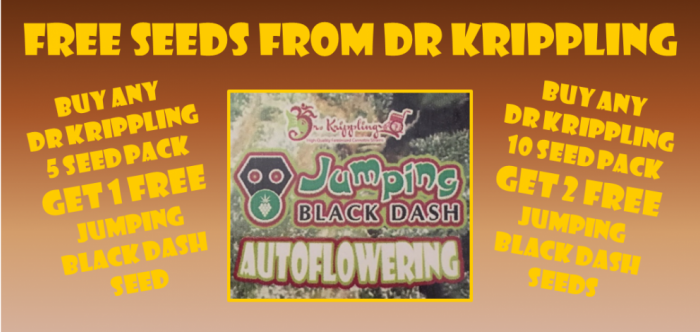 Dr Krippling Free Seeds Promotion April 2017 | Discount Cannabis Seeds
