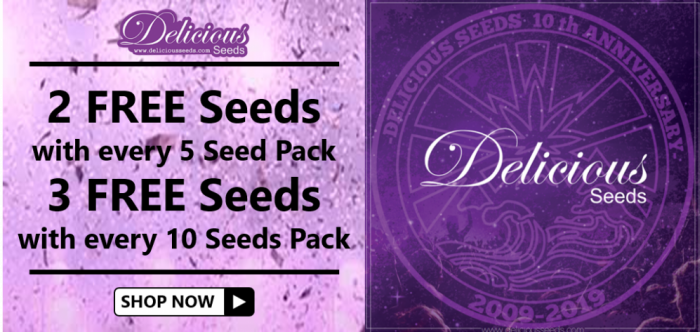 Free Delicious Seeds - Discount Cannabis Seeds