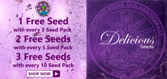 Delicious Seeds - Discount Cannabis Seeds