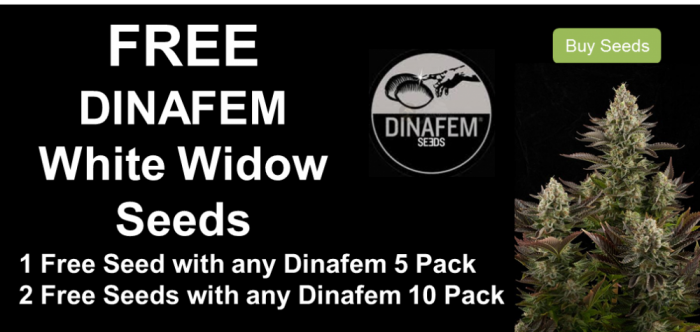 Dinafem Free Cannabis Seeds Promotion