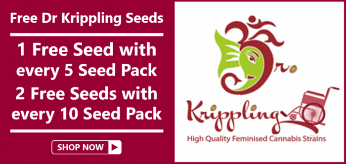 Free Dr Krippling Seeds - Discount Cannabis Seeds